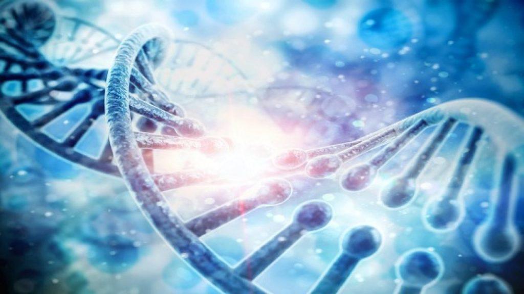 molecular diagnostics market