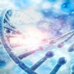 The comprehensive overview of the molecular diagnostics market